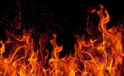 火焰木图例 手绘